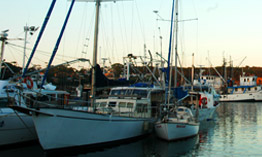 Ulladulla Harbour, home to dozens of fishing and leisure craft.